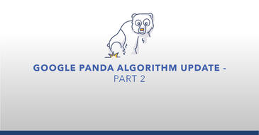 AMP_Google Panda